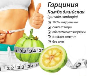 Гарциния Камбоджийская для похудения * Отзывы, где купить, инструкция как принимать, цены, противопоказания