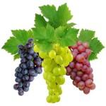 Калорийность винограда кишмиш