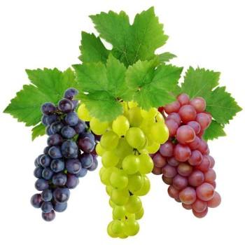 Виноград калорийность кишмиш