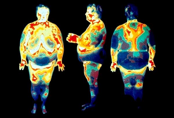 Толстый человек через тепловизор