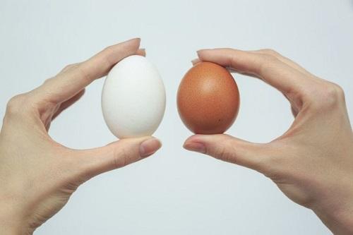 Держит яйца